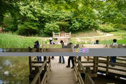 어린이대공원 길