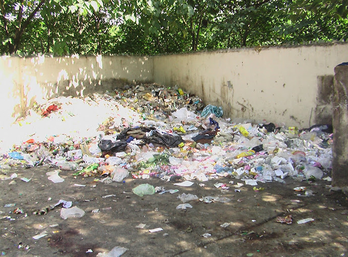 Safe disposal of Hospital waste , an important but forgotten part of sanitation