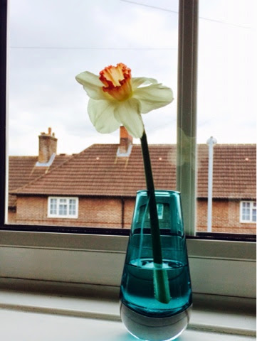 LSA Glass Bud Vase from Red Candy