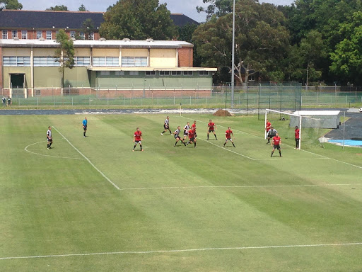 Newcastle Athletics Field (Athfield), Football Club, Newcastle West NSW 2302, Reviews