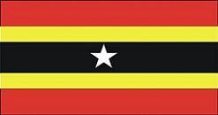 Bandera del Municipio Juan Jose Mora