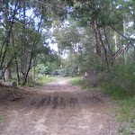 Bobbin Head Track (25349)
