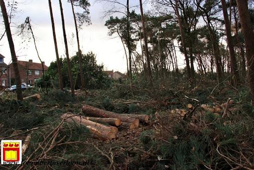 houtoogst pritter Overloon 25-11-2012 (10).JPG