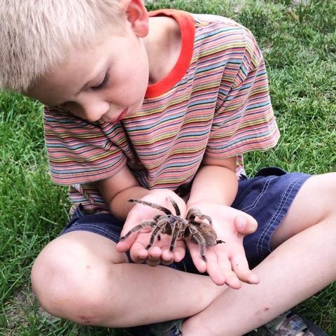 Dan holding tarantula