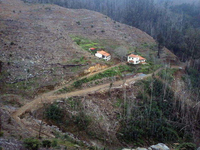 Casa do Montado do Barreiro