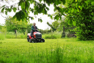 french village diarires ride on mower gardening
