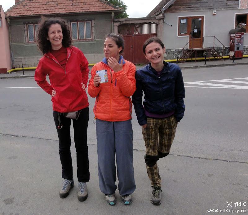2014.07.13 - P Craiului - Tr Diana 4A, 4lc