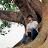 Dwaipayan Roy avatar image
