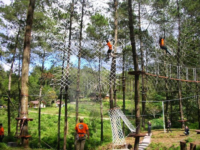 Bandung Tree Top - PHRI KBB