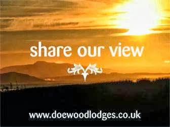 Camping  at Doe Wood Lodges