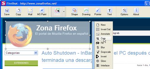 Manipulando una captura de pantalla con FireShot