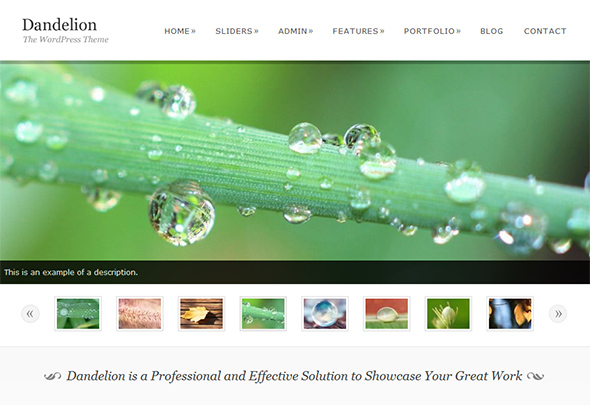 Dandelion Eco Friendly WordPress Theme