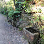 The two troughs at Jersey Spring (172947)