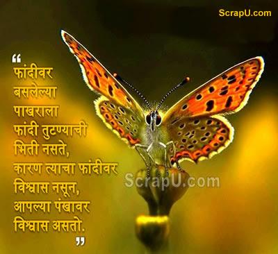 Daal par baithi titali ko daali ke toot jane ka koi darr nahi hota...kun ki use apne pankho par vishwas hota hai - Nice pictures