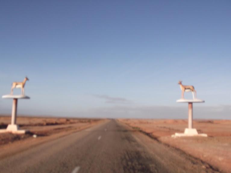 marrocos - Marrocos e Mauritãnia a Queimar Pneu e Gasolina - Página 10 DSCF1162