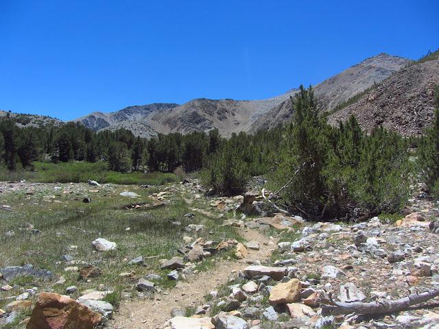 trail approaching Brown Lake