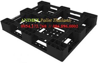 Pallet nhựa lưu kho nhập khẩu Thái Lan