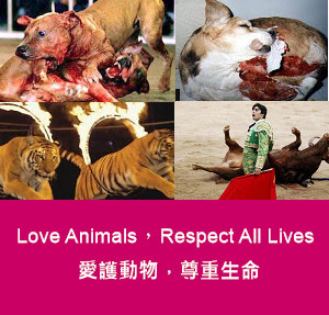 all lives are equal respect all lives
