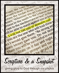 Scripture and Snapshot