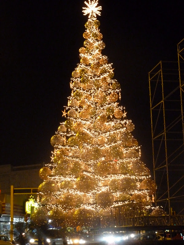 The tree in downtown Lima...it was made out of disco balls and wasn't a tree at all