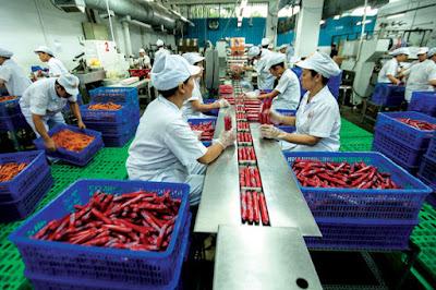 Đơn hàng chế biến thực phẩm cần 15 nữ thực tập sinh làm việc tại Hokkaido Nhật Bản tháng 05/2016