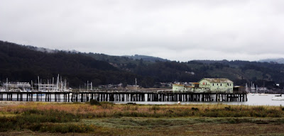 Pillar Point Harbor, Half Moon Bay