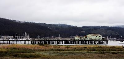 Pillar Point Harbor, Half Moon Bay