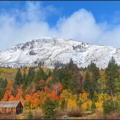 Barbara Stockton Photo 9