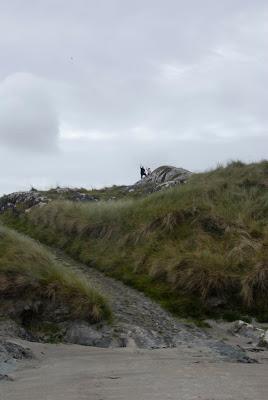 Abbey Island, Derrynane, Ireland