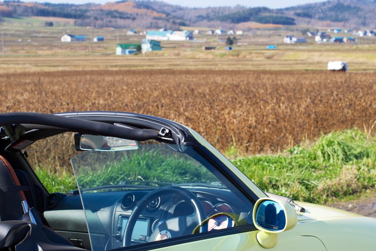 黒千石大豆の畑を眺めるShunくん