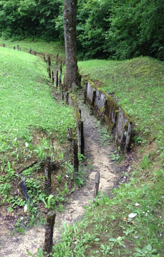 la vie est bonne exploring the verdun battlefield