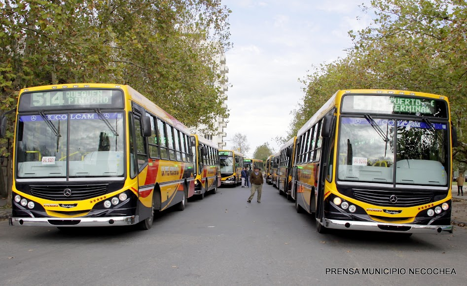 nuevos y modernos ómnibus de la Compañía de Transportes Necochea S.A micros colectivos