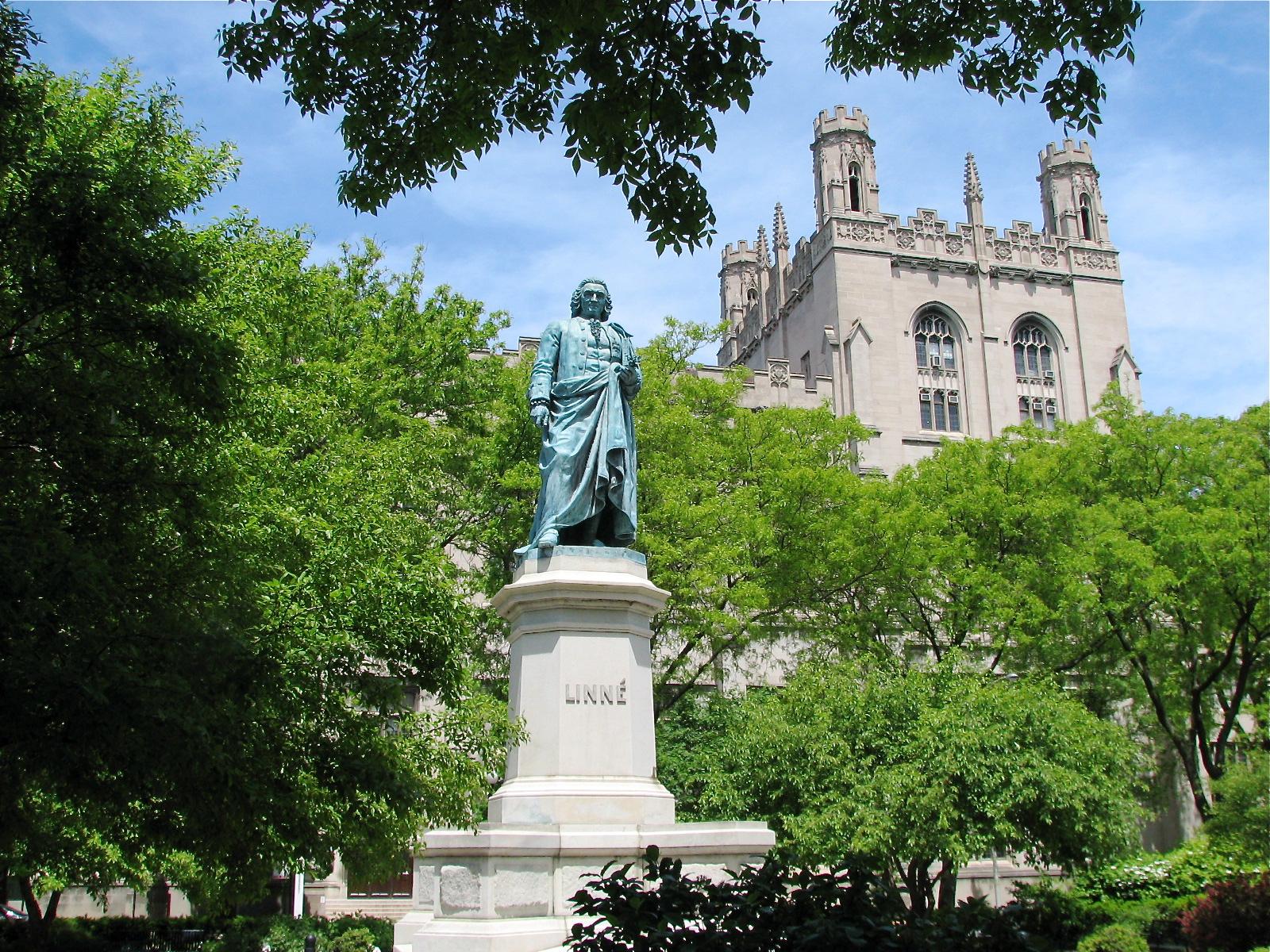 Image result for carl linnaeus statue chicago