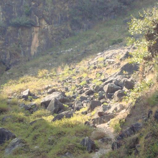 Ashish Bali Photo 21