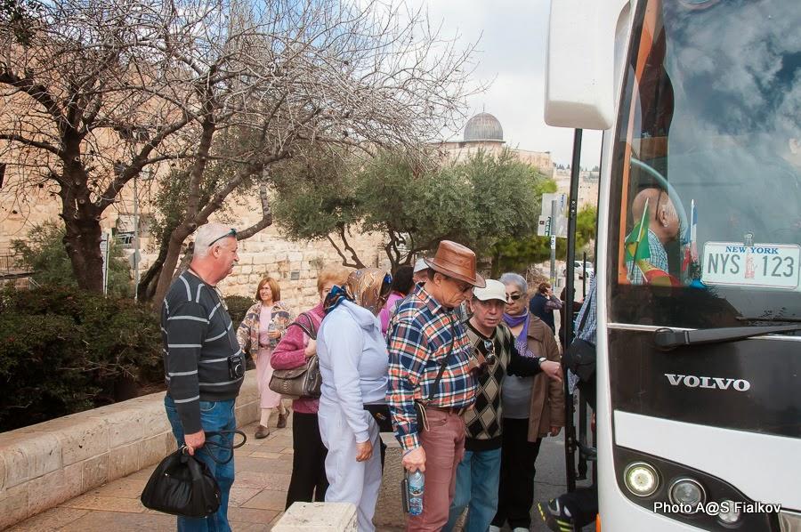 Экскурсия в Иерусалиме Светланы Фиалковой.