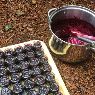 Wildberry Jam Making Outdoors