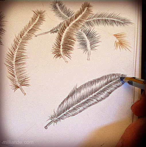 how%20to%20draw%20a%20feather%20%2C%20sketching%20feathers%20%2C%20milliande%20Sketchbook%20