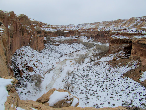 View up Horseshoe Canyon from the Deadman's Trail