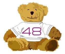 bear48