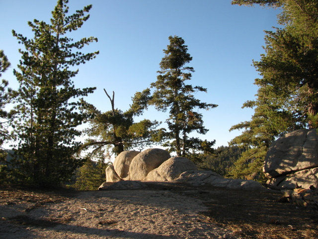 some rounded boulders among a few trees