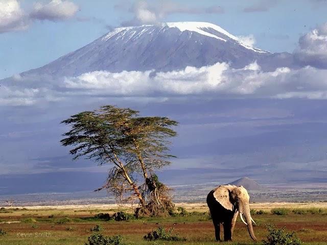 Férias na Tanzânia - Parque Nacional do Kilamanjaro