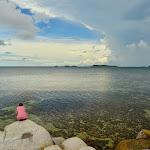 Ocean widoczny ze skał na Bird Island. Kilkaset metrów rafy.