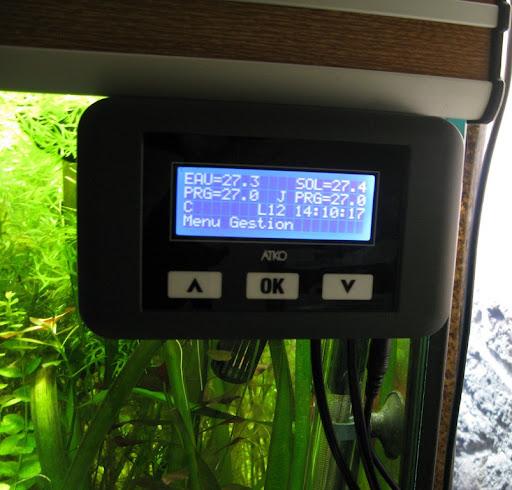 Amazonien 800 litres Aquarium-aquascaping-final19%252520%25255B1024x768%25255D