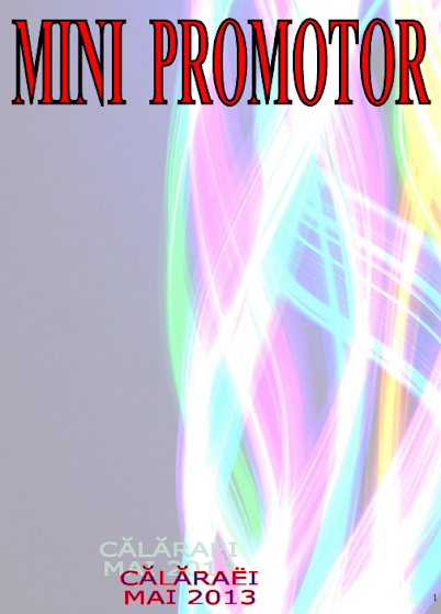 ed3_liceu_mini-promotor_LICEUL TEHNOLOGIC_TRANSPORTURI AUTO_CALARASI_CALARASI