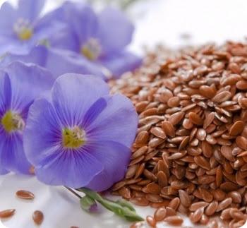семя льна - лечение