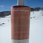 Ancient Herb Garden information sign (299869)