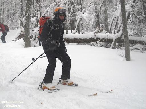 coborarea prin padure nu e deloc simpla pentru ca zapada nu e foarte mare pe aici si schiurile se pot zgaria plus ca poteca are portiuni de gheata pe sub ceea ce ne va asigura niste trante