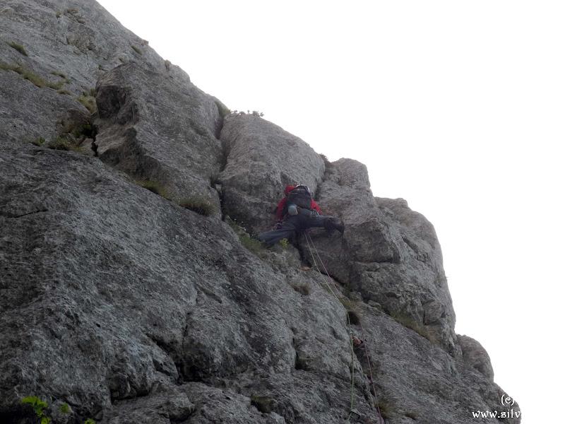 2014.06.29 - P Craiului - Traseul Fata Nordica
