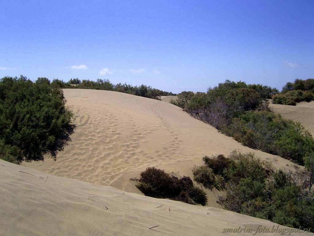 Гран Канария - песчаные дюны фото