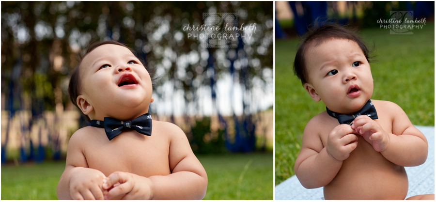 Baby in bow tie photos